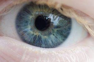 pplware olho humano00 720x480