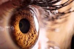 Abril Marrom: o que é importante saber sobre prevenção à cegueira