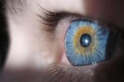 Geneticistas tratam doenças oculares antes de elas se manifestarem