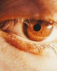 Método de injeção dupla aumenta visão de camundongos gravemente cegos