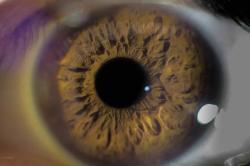 Terapia antiangiogênica é aliada em tratamentos oculares